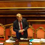 Novembre 2013. Presentazione del bilancio interno e del rendiconto del Senato