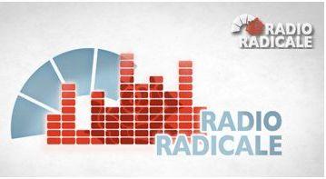 Radio Radicale: Intervista a Lucio Malan sulla unificazione delle Camere