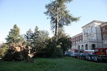 Piemonte_crollo liceo Darwin
